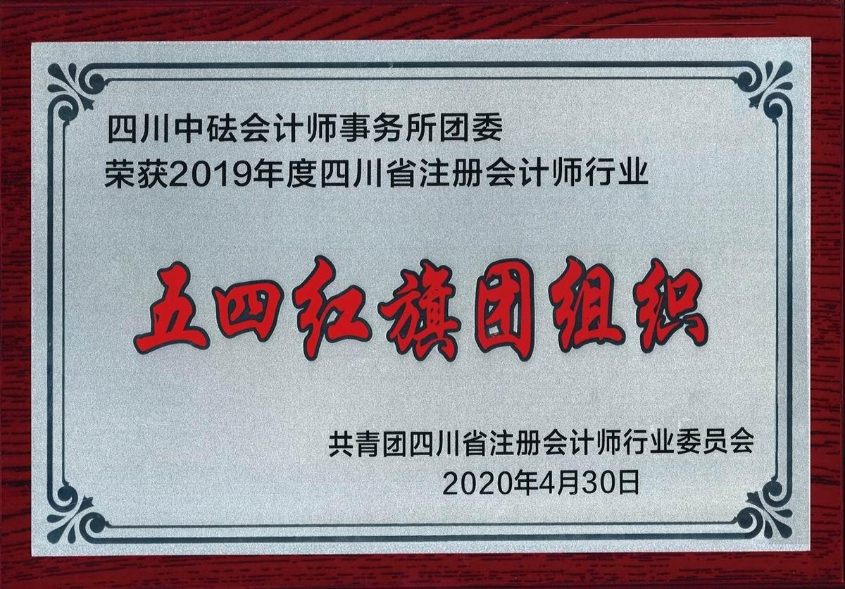 """2019年度四川省注册会计师行业""""五四红旗团组织"""""""