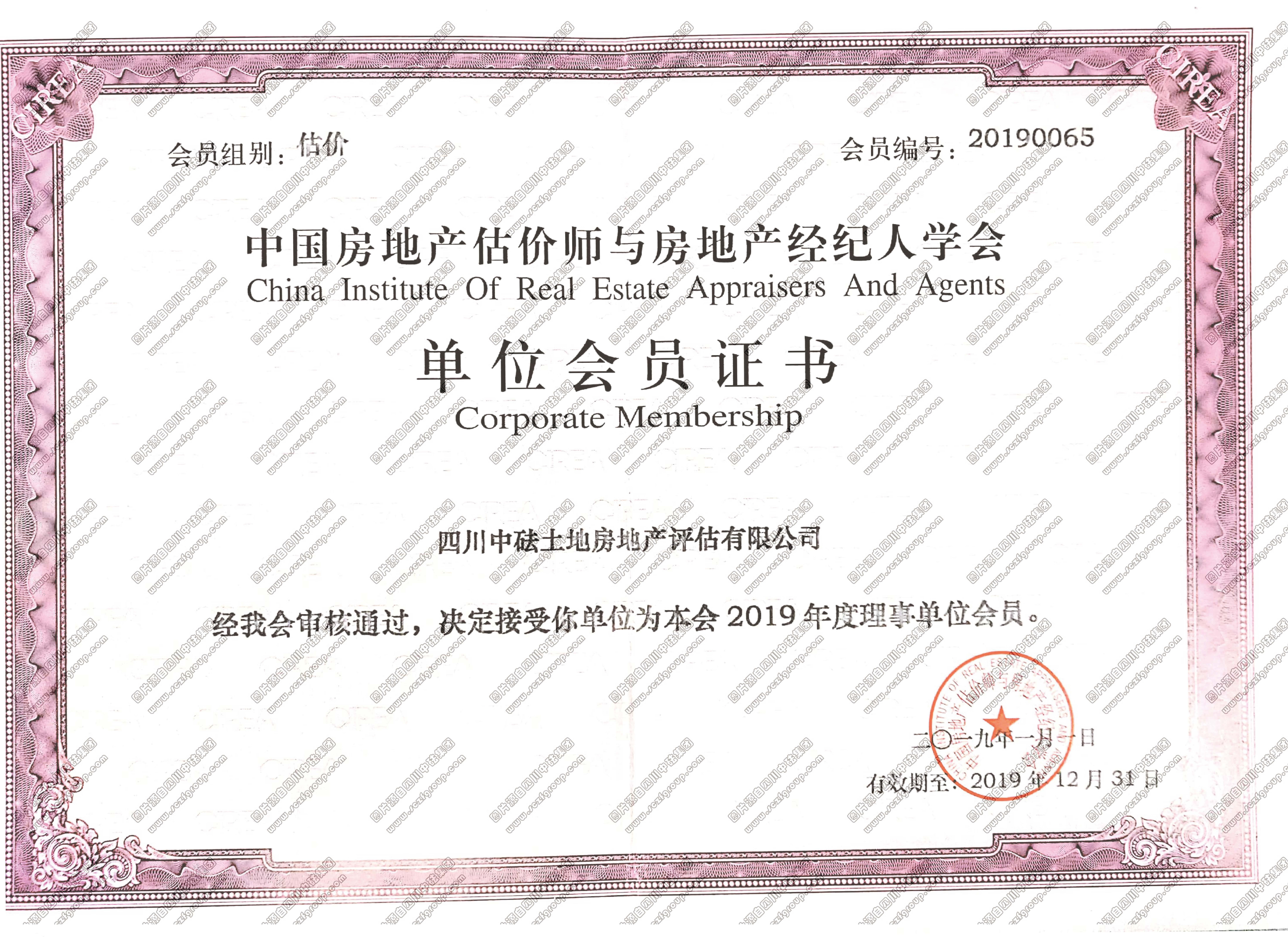 中国房地产估价师与房地产经纪人学会单位会员证书
