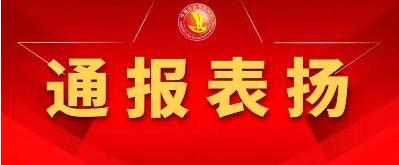 崇州项目表彰